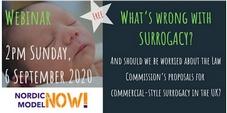 Nordic Model Now - Webinar on surrogacy ( registration)